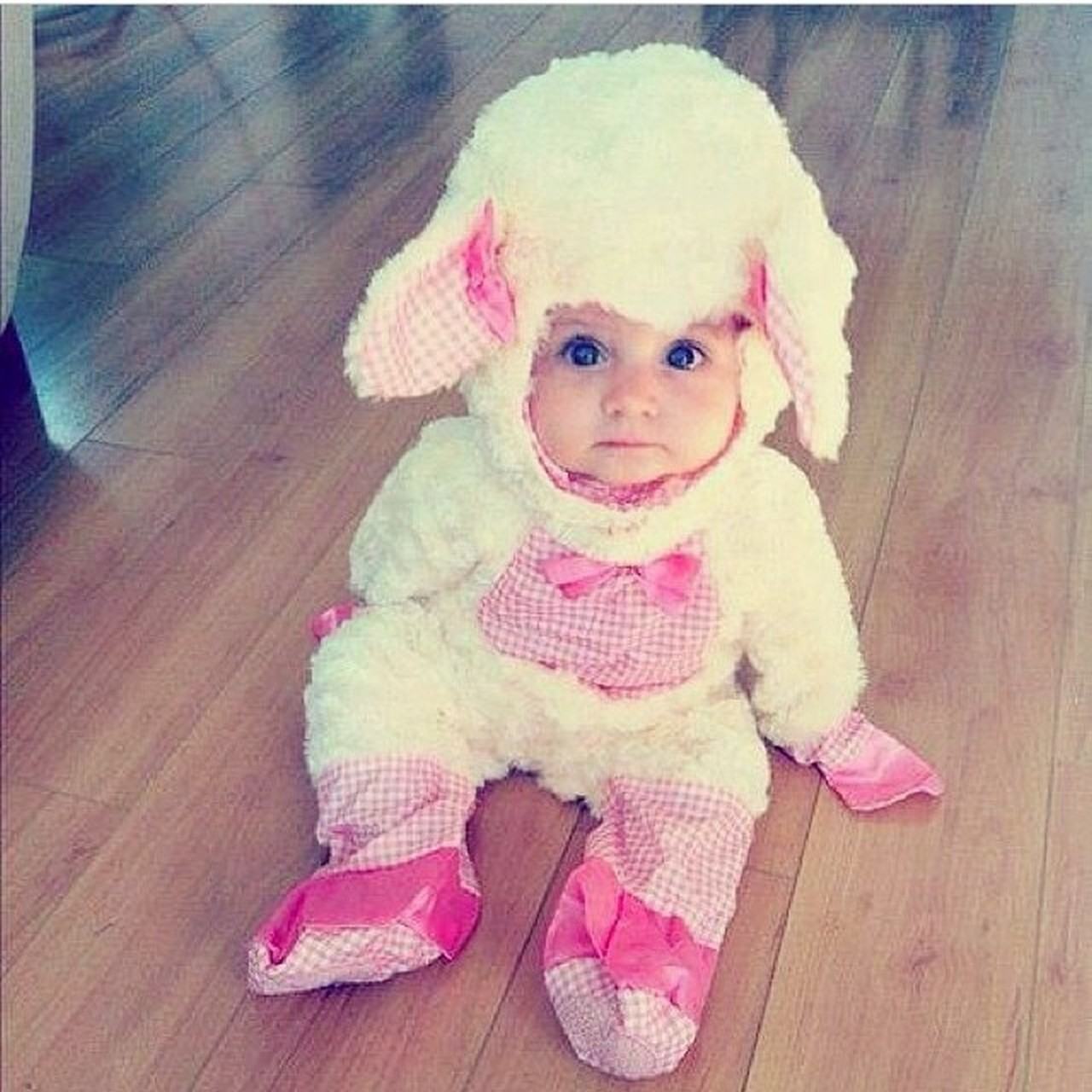 05b23e974c1a Cute baby animal costumes (13) - Fashion Best